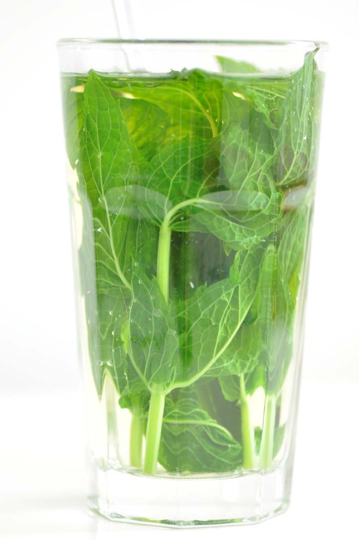 fresh mint tea | Foodiesgarden