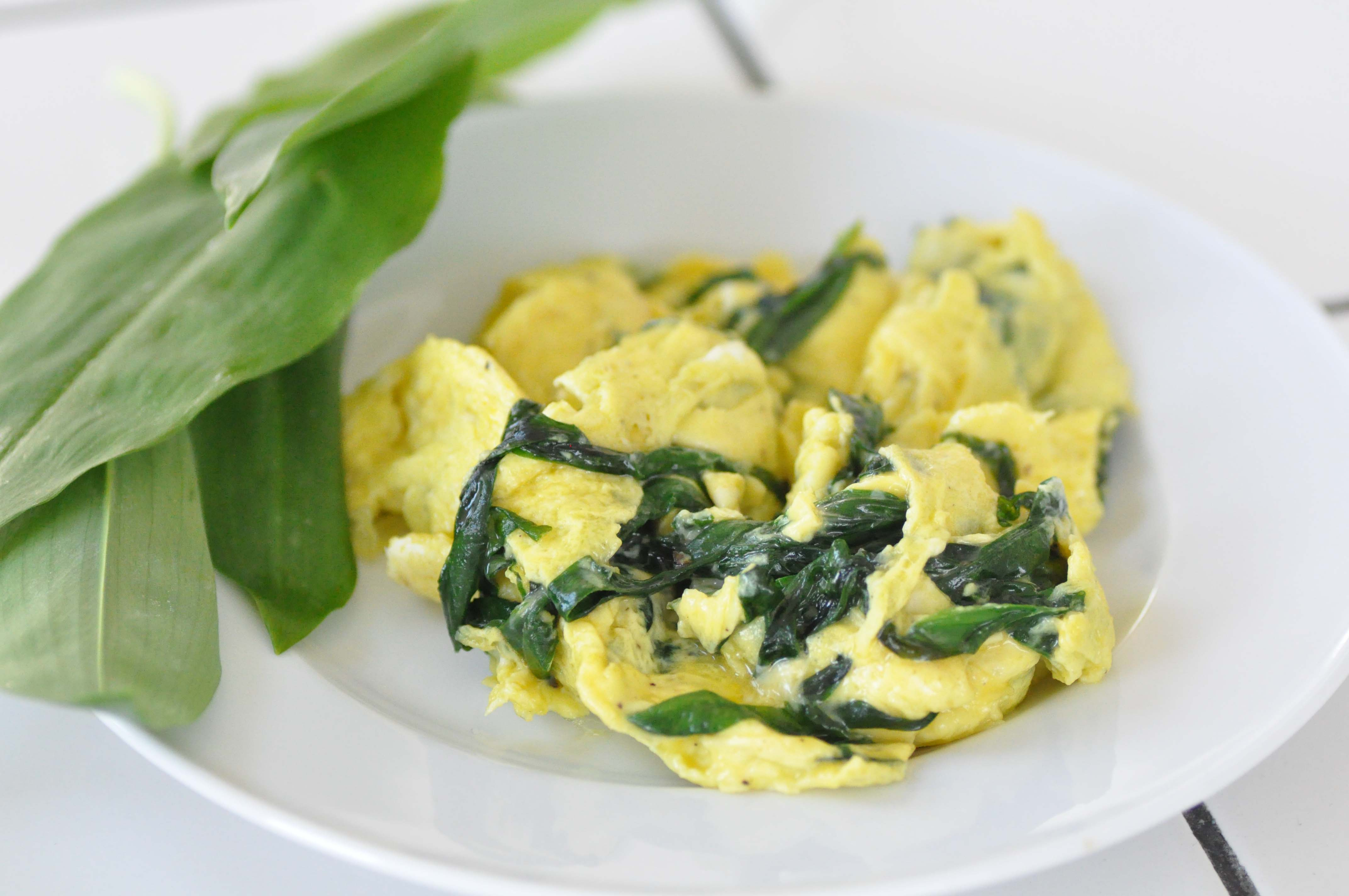 scrambeled egg with bears garlic_bearbeitet-1