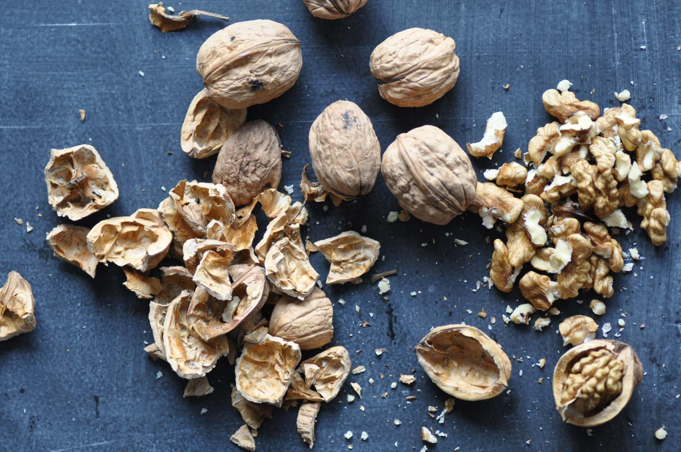 walnuts_bearbeitet-1